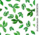Seamless Foliage Pattern....