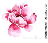 Decorative Watercolor Isolated...