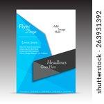 vector flyer  brochure ... | Shutterstock .eps vector #263931392