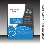 vector flyer  brochure ... | Shutterstock .eps vector #263931398