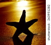 the silhouette of a seastar... | Shutterstock . vector #263951282