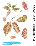 a vector watercolor  painting... | Shutterstock .eps vector #263969018