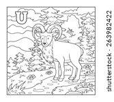 Coloring Book  Urial  ...