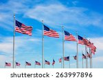 Washington Monument Flags...