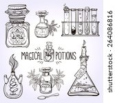 set of beautiful ornate potion... | Shutterstock .eps vector #264086816