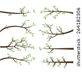 branch silhouettes elements | Shutterstock .eps vector #264182306