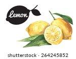 watercolor lemons | Shutterstock .eps vector #264245852