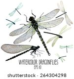 Stock vector watercolor set of dragonflies top front views vector illustration isolated on white background 264304298
