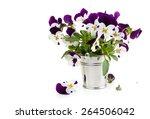 Purple Pansies In Bucket....