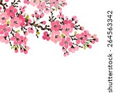 floral background of flowering... | Shutterstock . vector #264563342