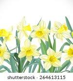 Lush Yellow Narcissus Seamless...