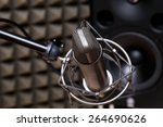tube microphone  professional... | Shutterstock . vector #264690626