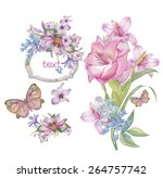 watercolor flower's isolated on ... | Shutterstock . vector #264757742