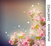 shining cherry blossom... | Shutterstock .eps vector #264874922