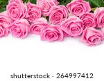 Stock photo valentines day background with pink roses isolated on white with copy space 264997412