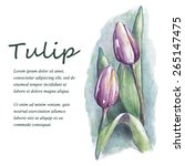 watercolor tulip flowers with...