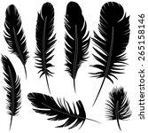feather of bird set...   Shutterstock . vector #265158146