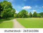 beautiful meadow in the park | Shutterstock . vector #265161086