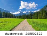 pathway in mountains. mountain... | Shutterstock . vector #265502522