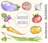 vector illustration   bright... | Shutterstock .eps vector #265530452