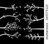 chalkboard  branch silhouettes | Shutterstock .eps vector #265575122