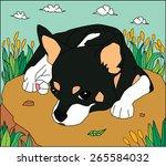 black dog in garden vector