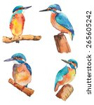 Watercolor Kingfishers