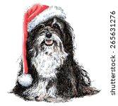 shih tzu with santa claus hat... | Shutterstock .eps vector #265631276