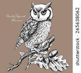 Owl On A Branch  Oriental Scop...
