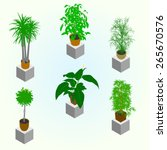 planting of greenery for the... | Shutterstock .eps vector #265670576