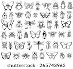 bug  butterflies  bees ... | Shutterstock .eps vector #265743962