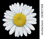 daisy flower with water drops... | Shutterstock .eps vector #265827368