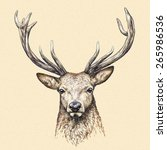 Color Engrave Isolated Deer Head