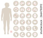 vector human anatomy  body pain ... | Shutterstock .eps vector #266478392