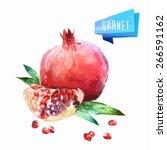 vector hand drawn watercolor... | Shutterstock .eps vector #266591162