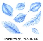blue feathers. watercolor... | Shutterstock . vector #266682182