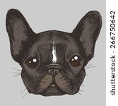 portrait of a french bulldog.... | Shutterstock .eps vector #266750642