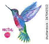 magic vector tropical bird... | Shutterstock .eps vector #267042512