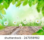 fresh green grass with wooden... | Shutterstock . vector #267058982