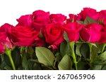Border Of Dark Pink Rose...