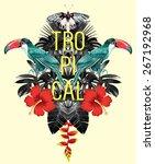 exotic tropical toucan bird in... | Shutterstock .eps vector #267192968