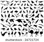 vector collection of birds | Shutterstock .eps vector #26721724