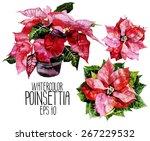 set of watercolor poinsettias.... | Shutterstock .eps vector #267229532
