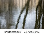 Indistinct Reflection Of The...