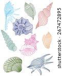 Set Of Abstract Sea Shells.
