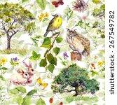 Nature  Bird  Rabbit  Tree ...
