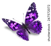 Stock photo beautiful purple butterfly isolated on white background 267572072