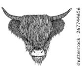 Hairy Cow With Patterns