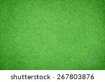 beautiful green grass texture | Shutterstock . vector #267803876