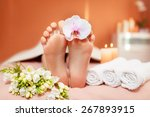 spa treatments for the feet.... | Shutterstock . vector #267893915